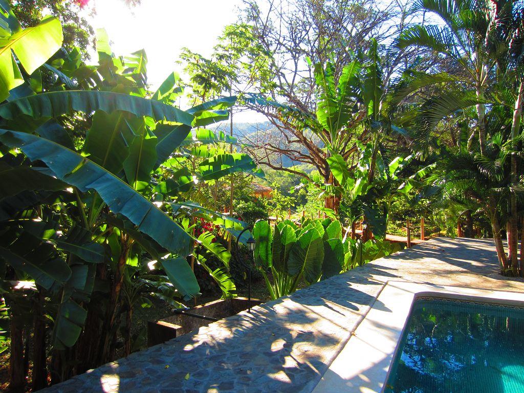 komp-FincaAustria_JungleLodge_terrace-3.JPG