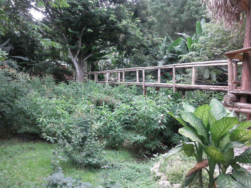 komp-FincaAustria_JungleLodge-Rancho-6.JPG