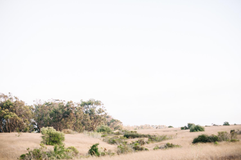Lauren L. Photography-32.jpg