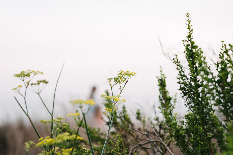 Lauren L. Photography-53.jpg