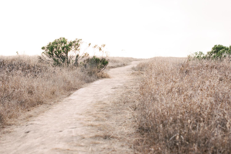 Lauren L. Photography-1-2.jpg