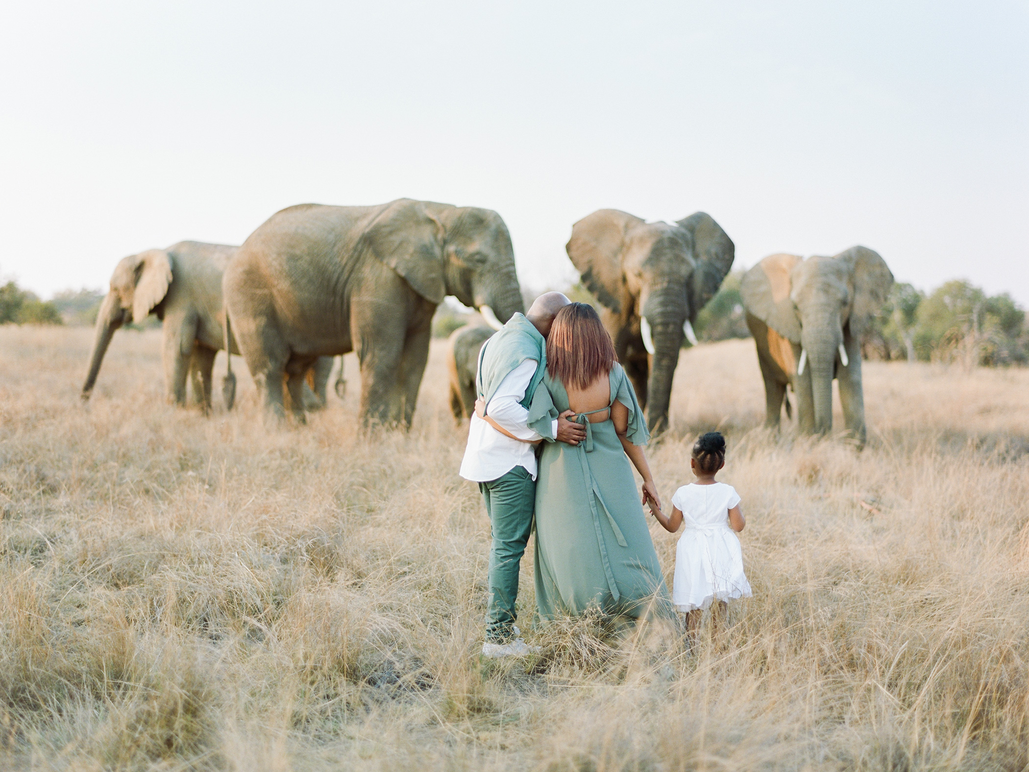 Safari Pregnancy | Rensche Mari