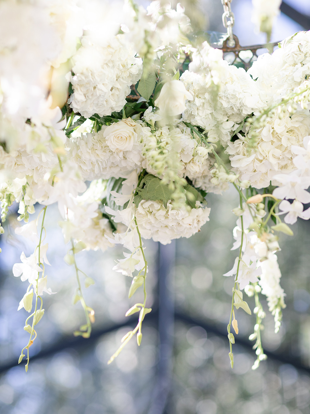 Hanging Arrangement | Rensche Mari Photography