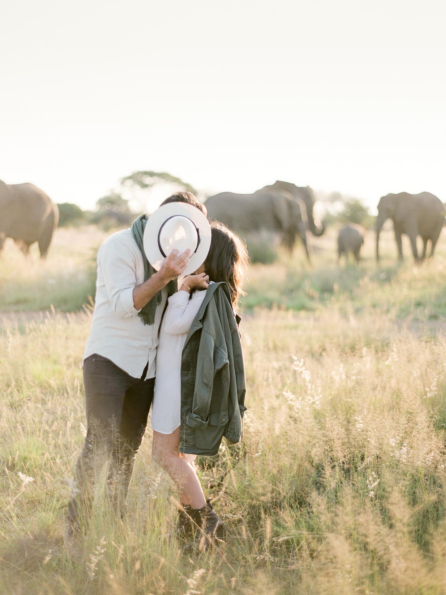 African Safari Portraits | Rensche Mari