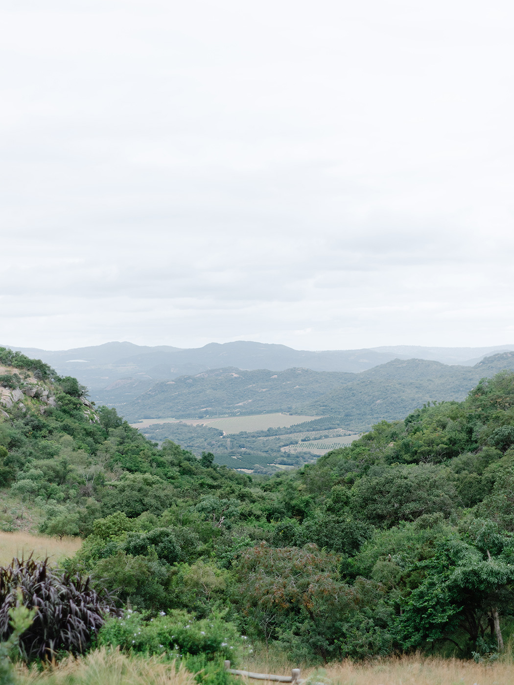 Nelspruit Landscape | Rensche Mari