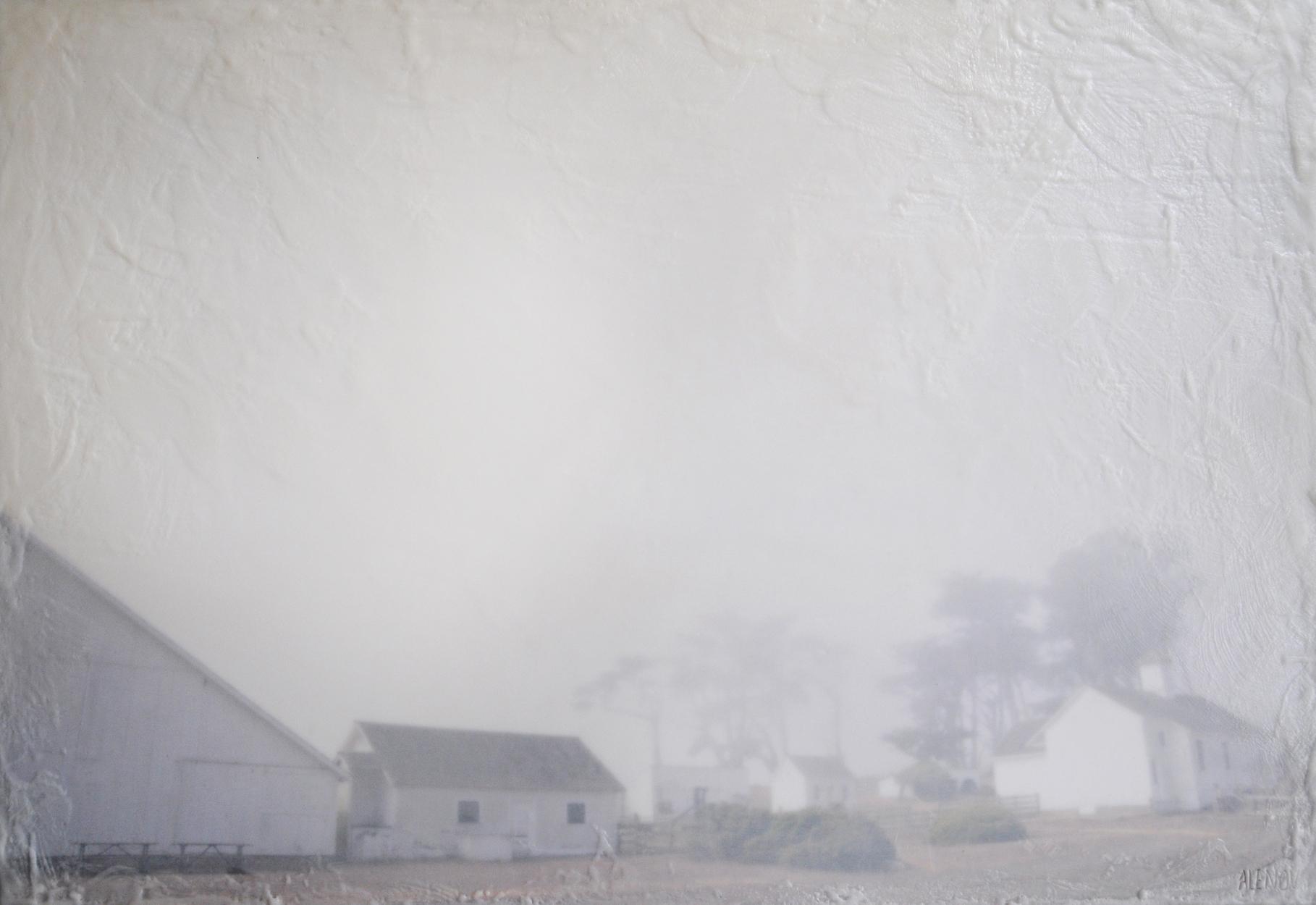 Pierce Point Ranch Fog   (20x30)