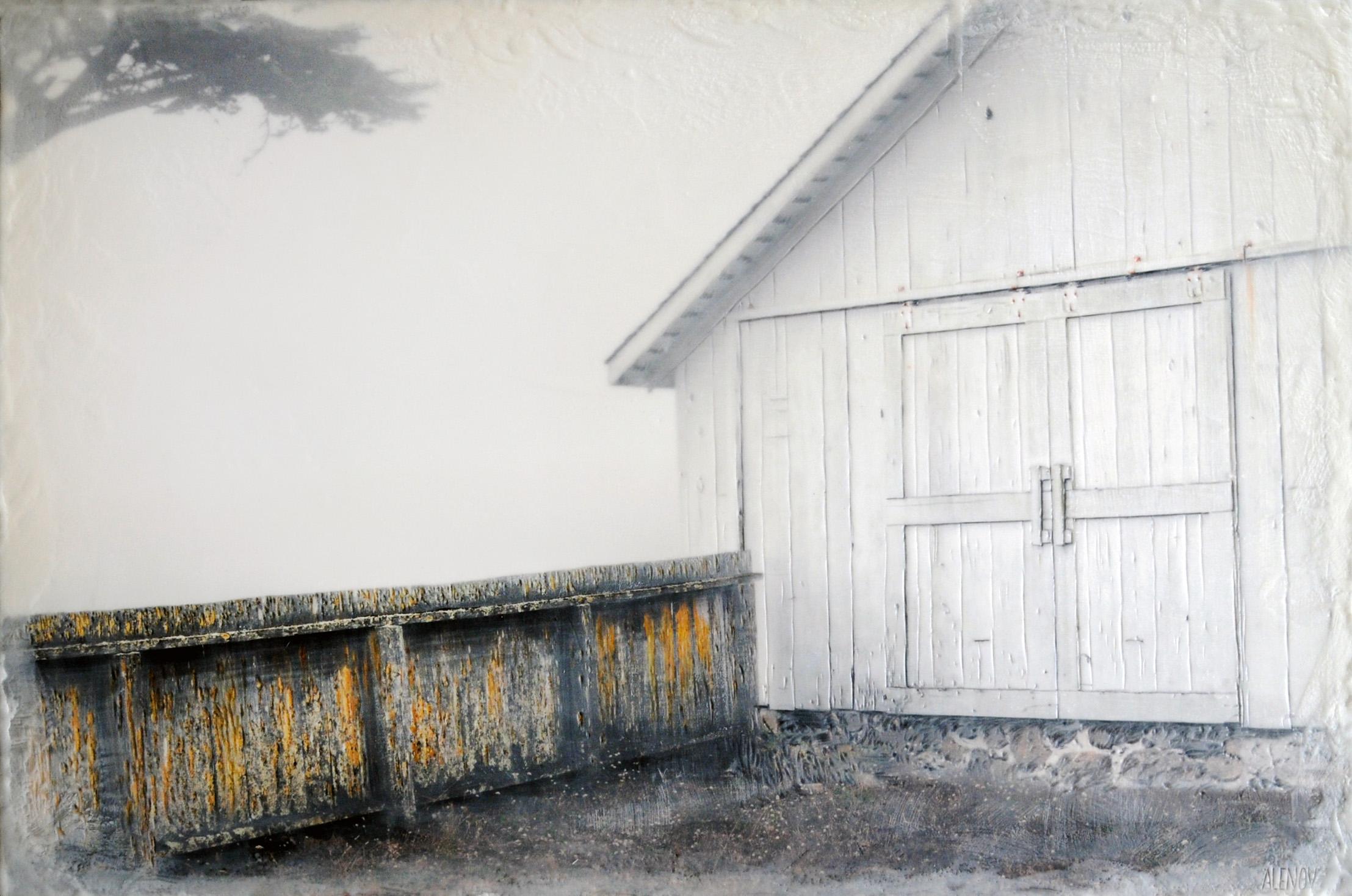 Lichen Fence   (20x30)