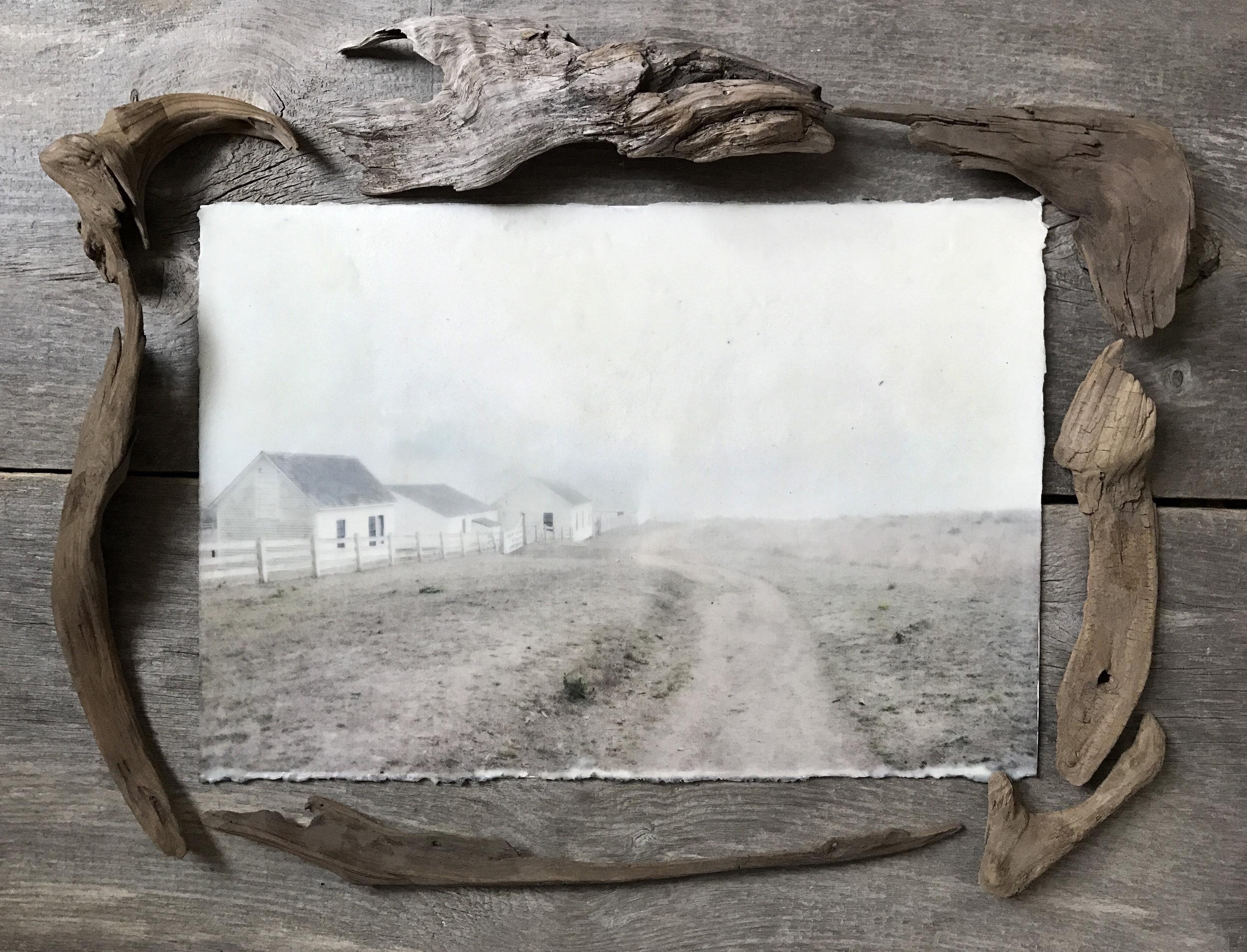 Pierce Point Ranch Pathway   (13x19)