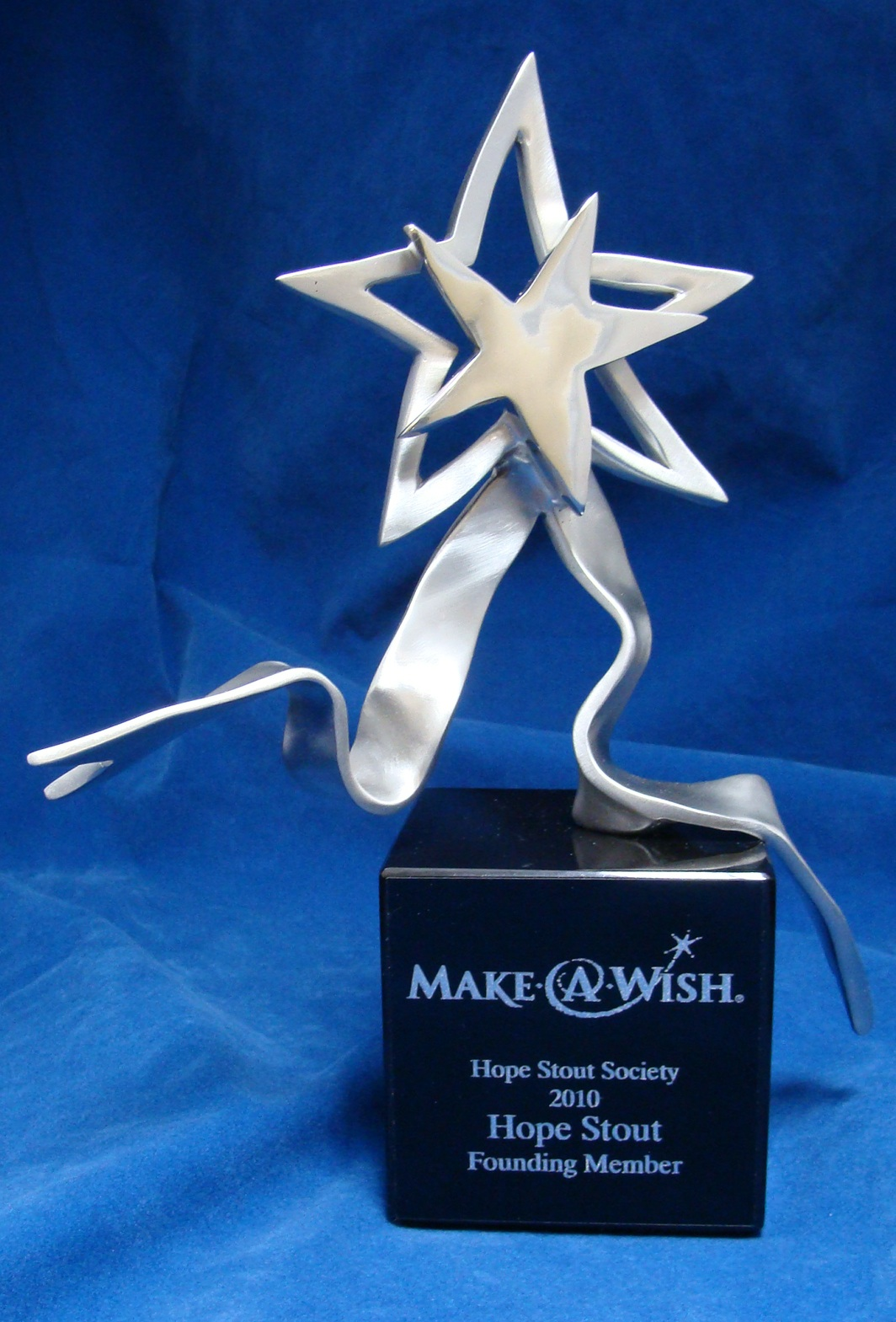 Make-A-Wish Custom