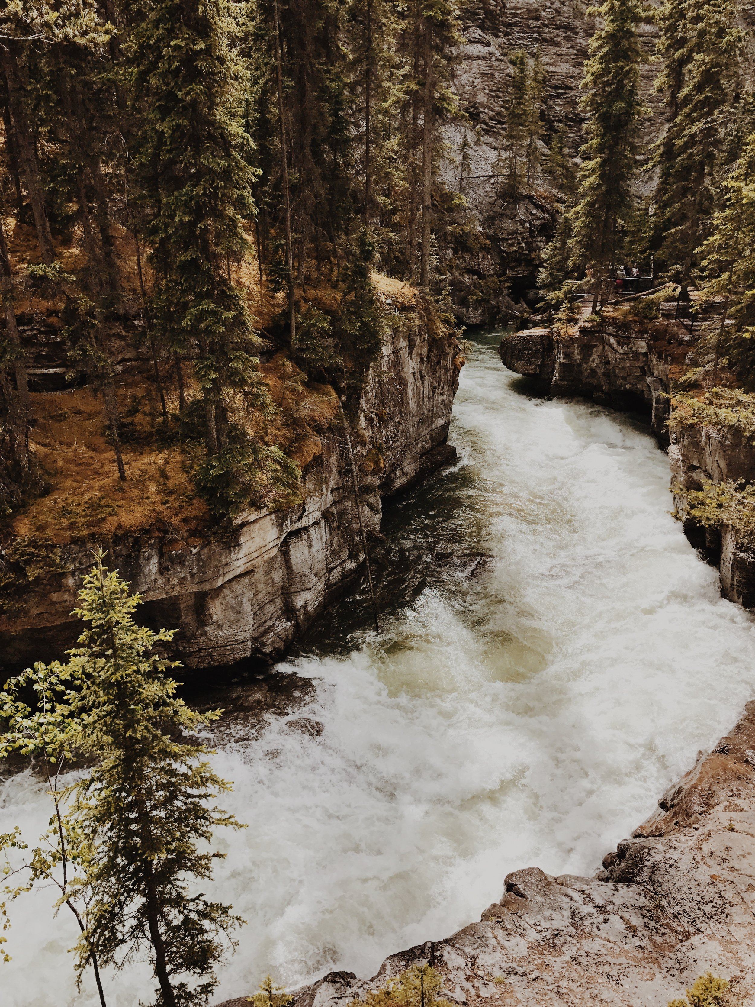 The hike alongside Maligne Canyon was stunning. All we wanted to do was keep climbing down even though we knew we had to climb back up.