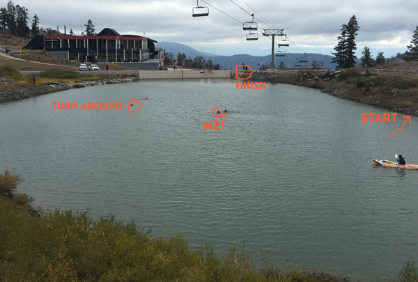 This is the diagram of the swim.