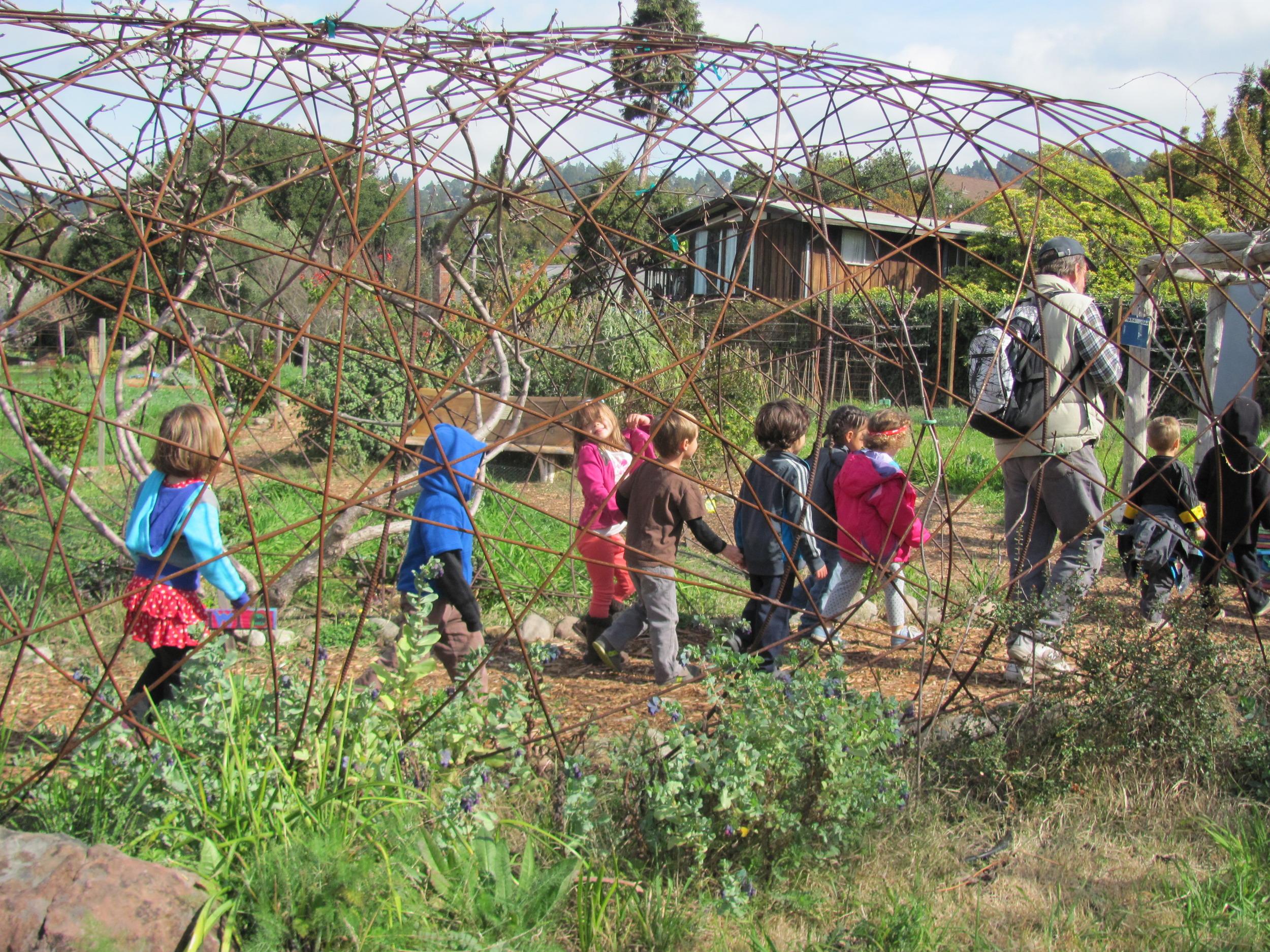 Edible School yard #2.JPG