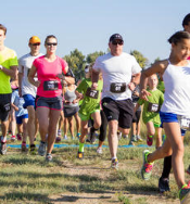sb_turtletrot_100814.jpg