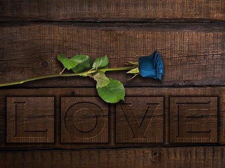 love-3740434__340.jpg
