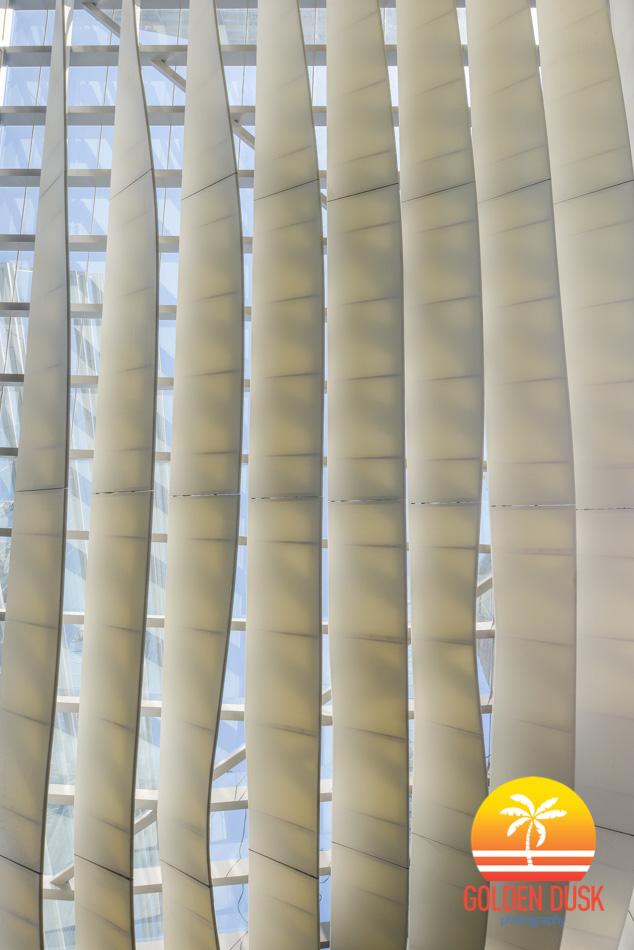 Miami Architecture-1.jpg