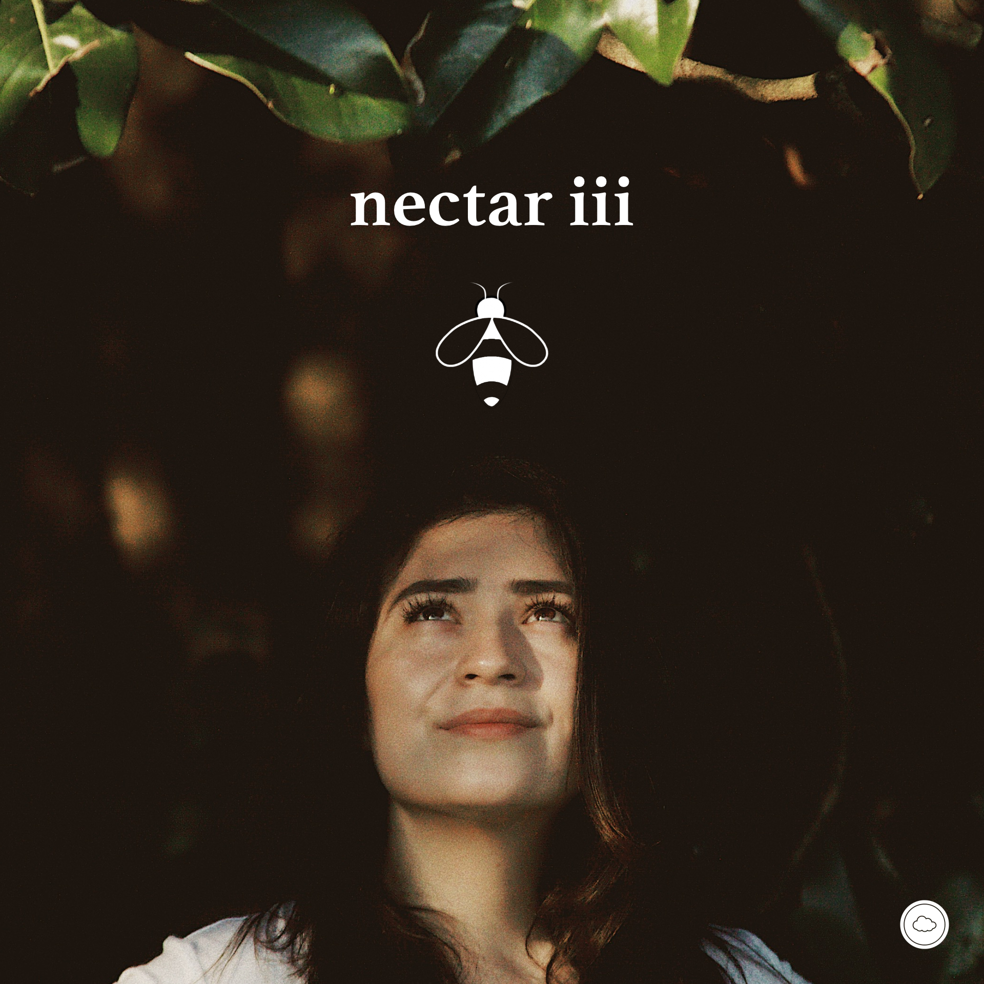 Nectar III   Not ready to let go of Summer? Neither are we. So naturally, we made a playlist. Featuring local talent like Beta Likhari and ESHOVO. | Curated with love by The Whiff Co.