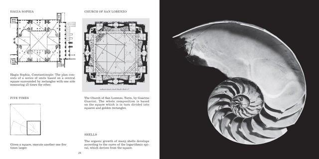 3053329-inline-s-2-the-hidden-geometry-ruling-the-world.jpg