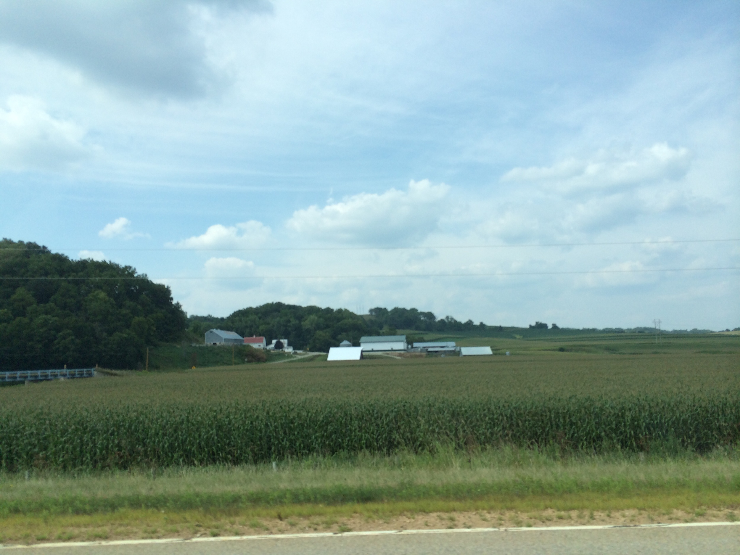 Farms as far as the eye can see. They look mostly like family farms and not huge corporate farms.