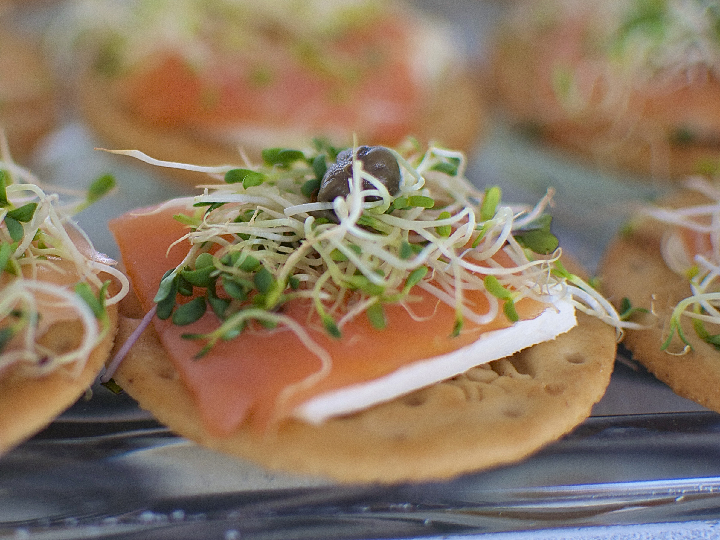 Galletita con Salmón Ahumado  Galletita con queso crema, salmón ahumado y alcaparra. (MÍNIMO 25 PIEZAS) Precio por pieza  $ 14.00