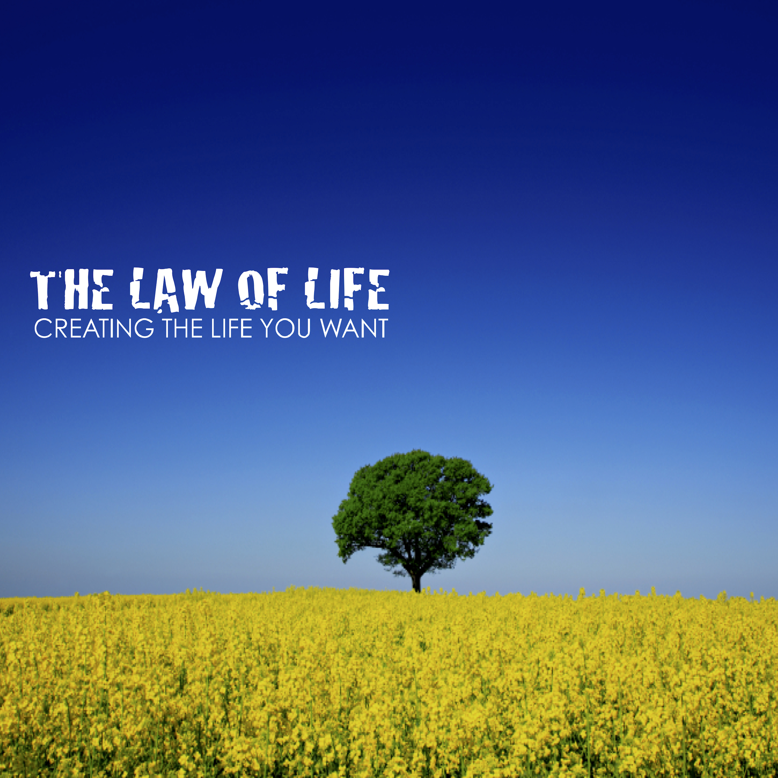 The Law Of Life.jpg
