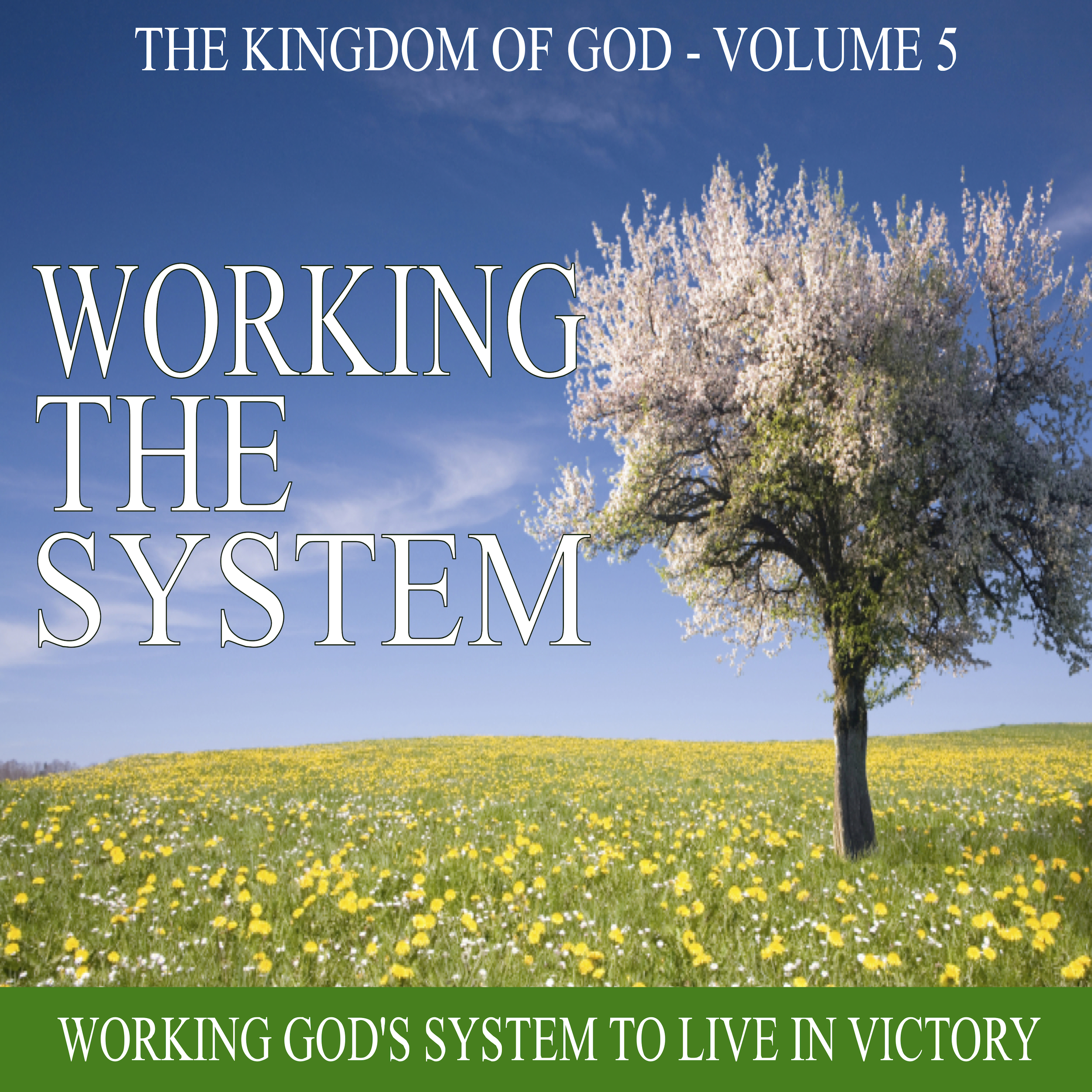 Working The System Cover Pic.jpg