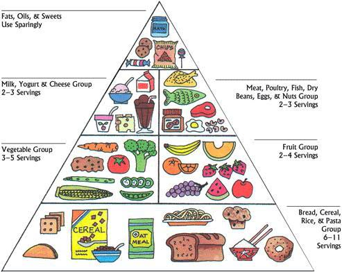 USDA original food pyramid 1992
