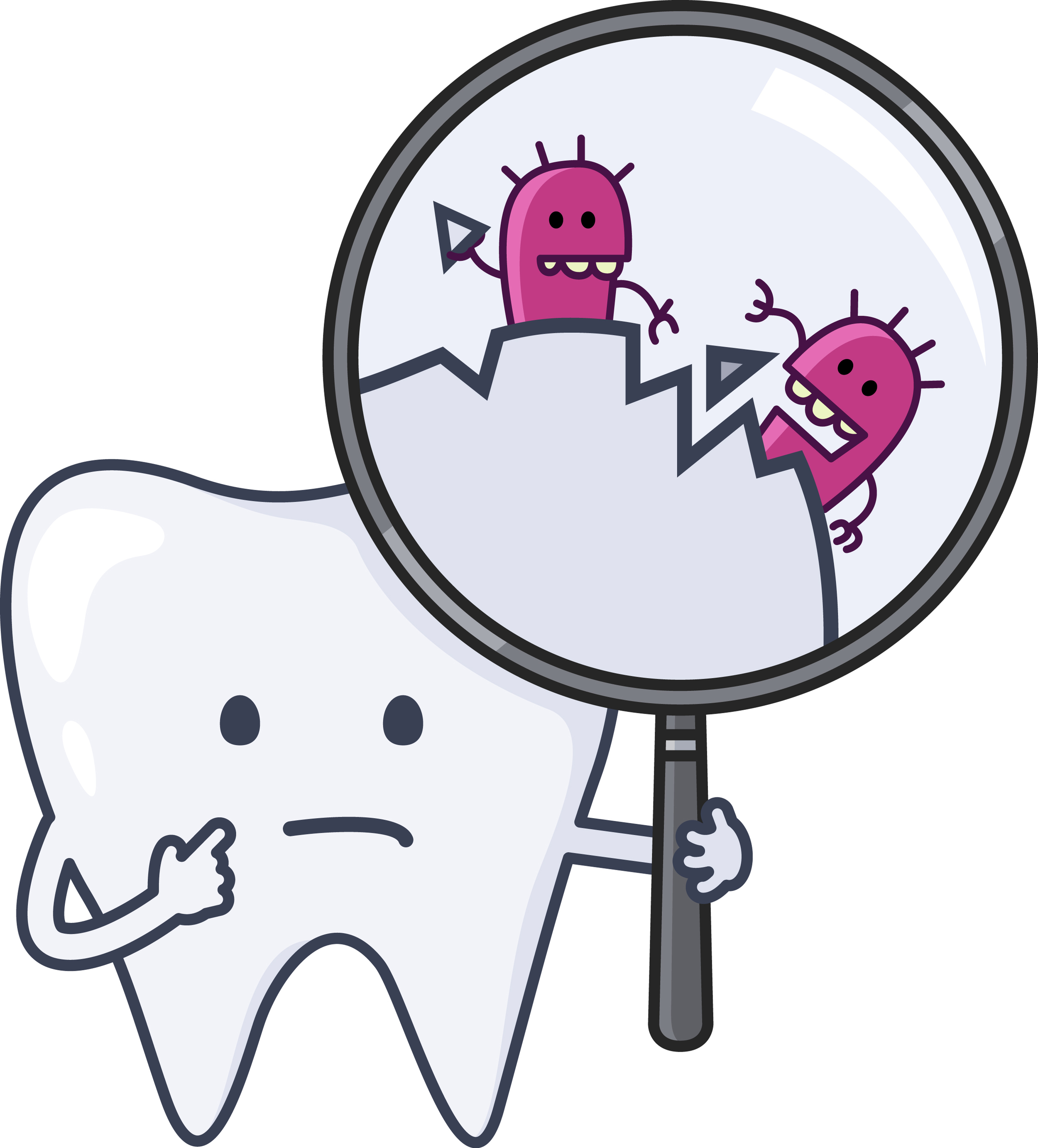 toothgerms.jpg