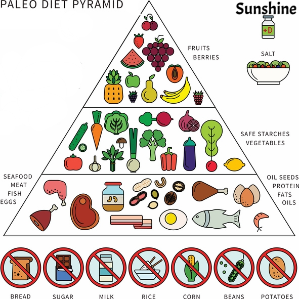 The Paleo Food Pyramid 3 Million Years Strong