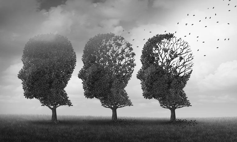 Alzheimers Trees.jpg