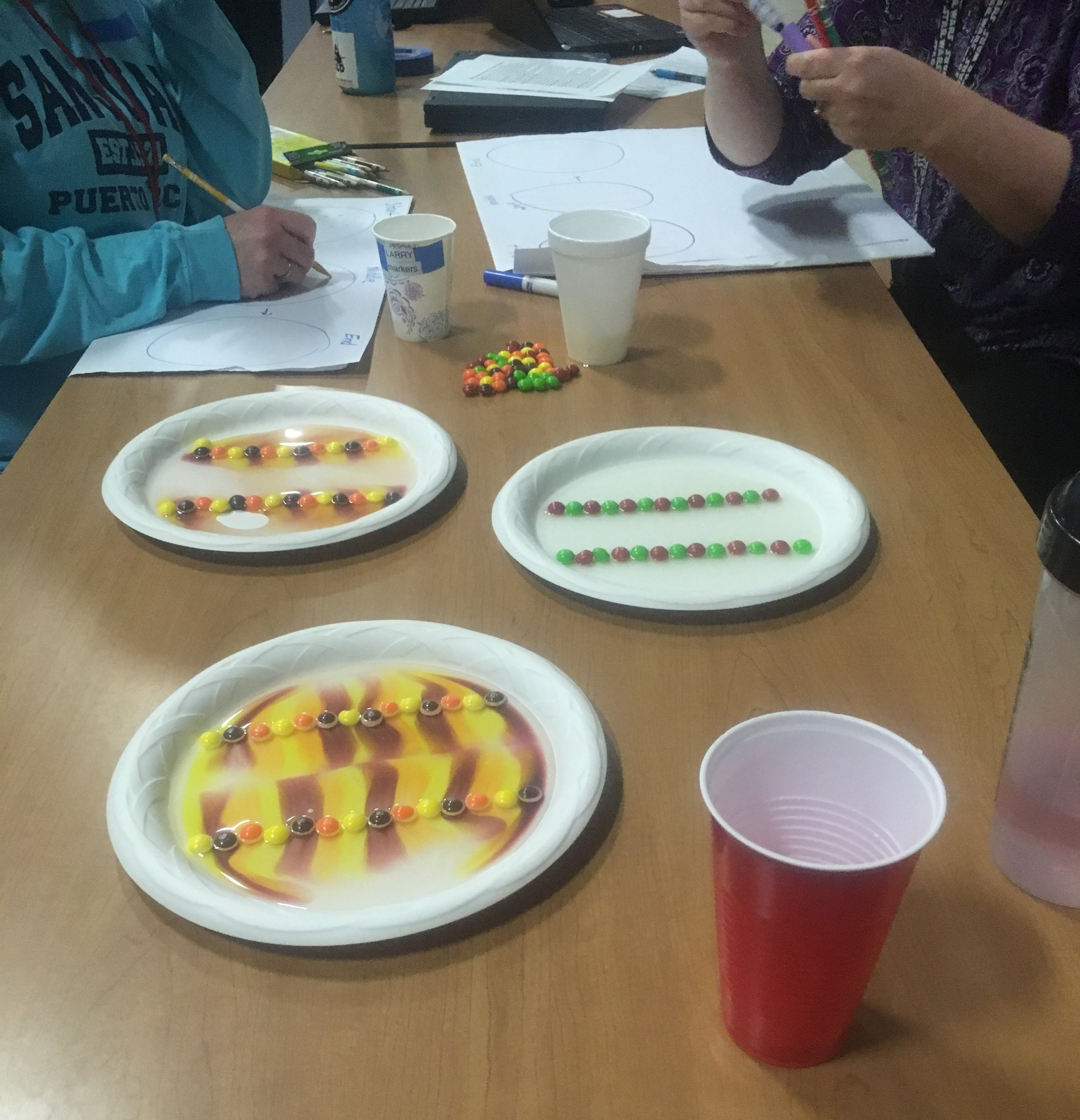 NGSS Science inquiry-based lesson on making predictions and studying patterns