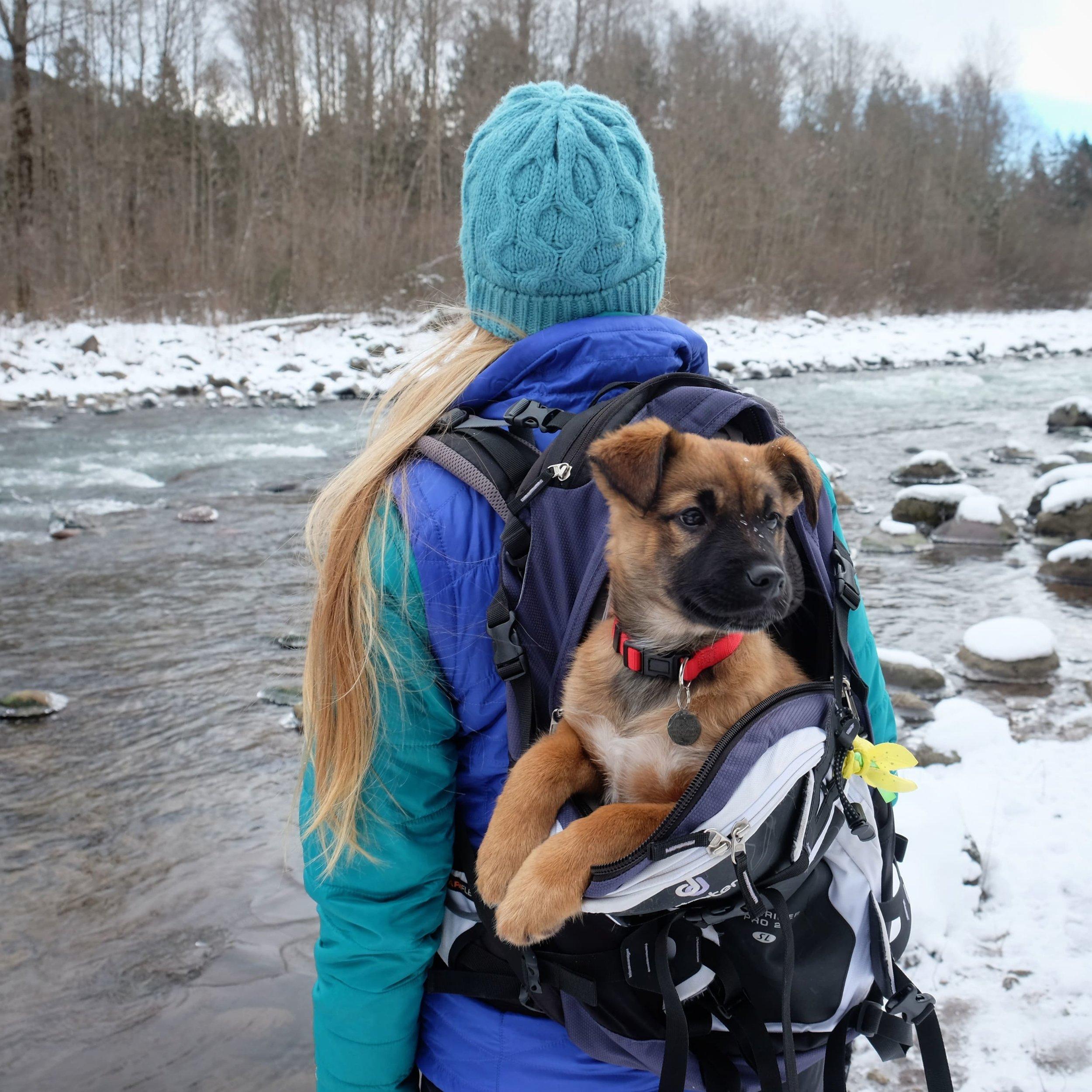 Becca.Tarbox.DogPackrafting2-min.jpg