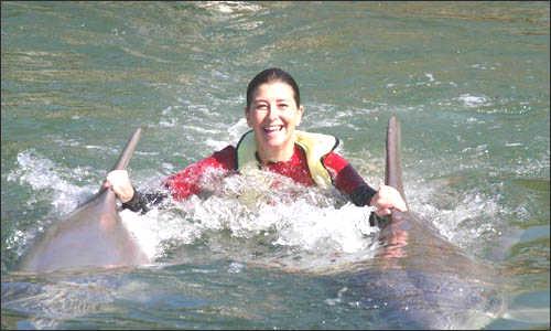 dolphin-swim.jpg