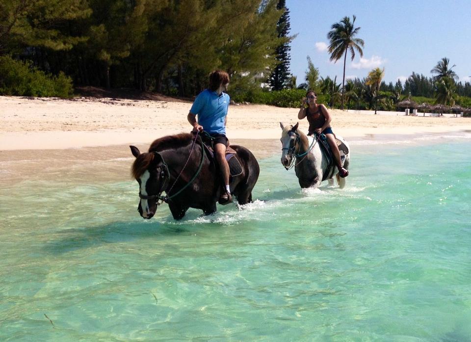 beachhorses.jpg
