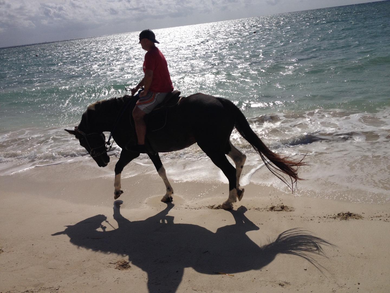 beachhorses1.jpg