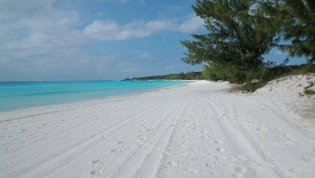 half moon cay beach.jpg