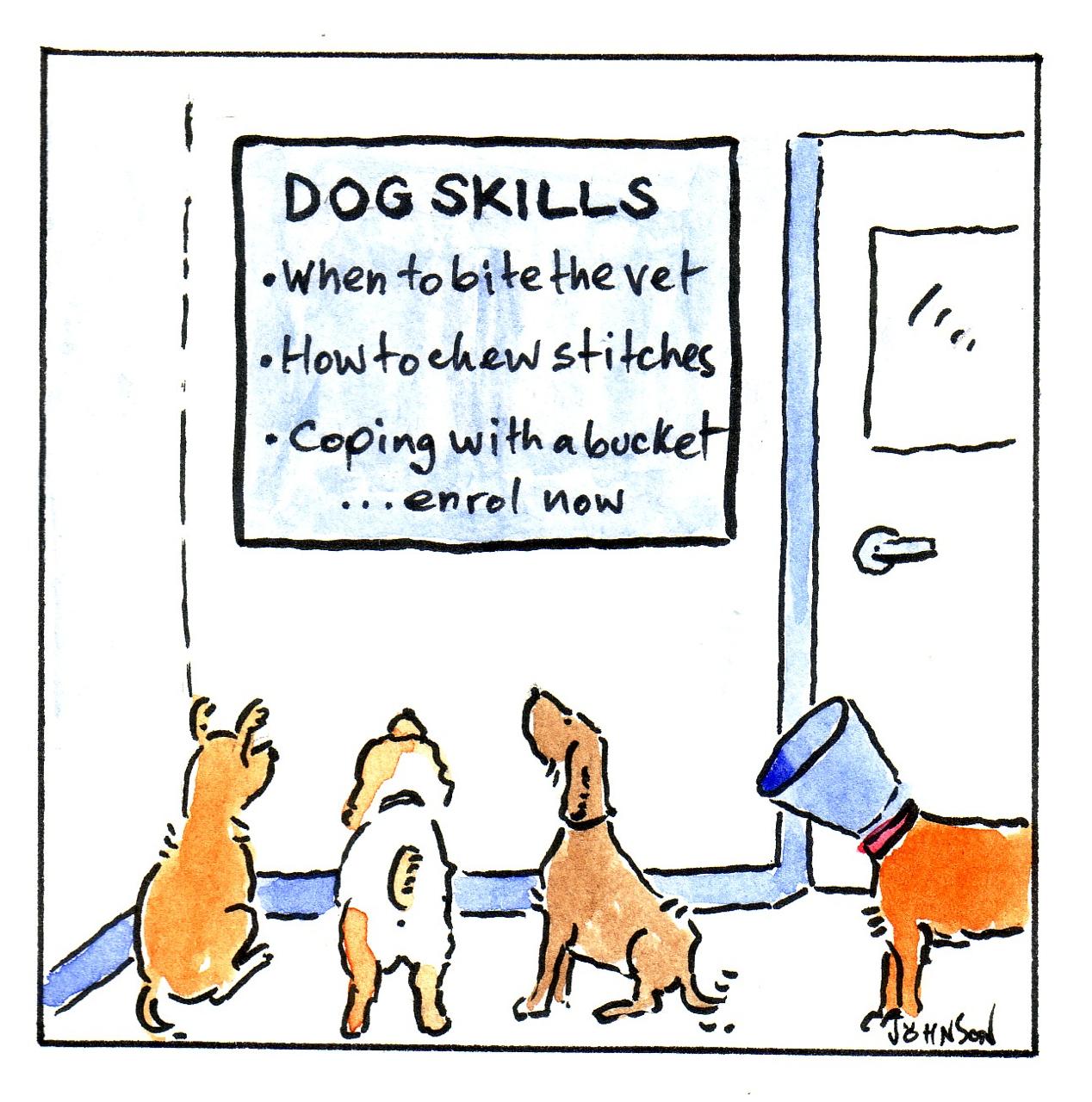 Cartoons courtesy  Dr Robert Johnson