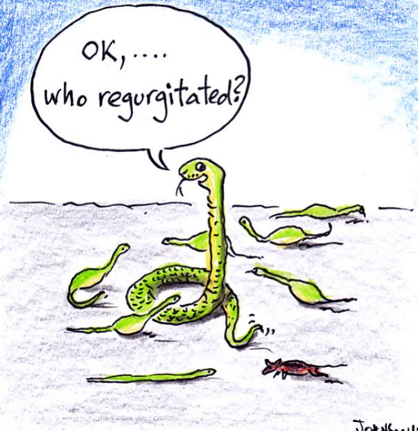 Cartoons courtesy of  Dr Robert Johnson