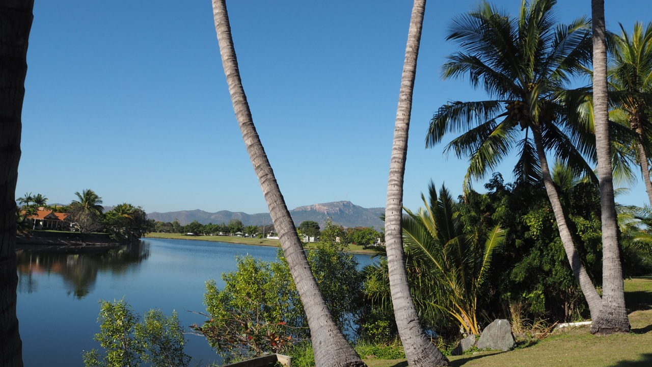 Dr Carmel spent a week in late July lecturing to JCU Veterinary students in Townsville on unusual pets..... tough work!