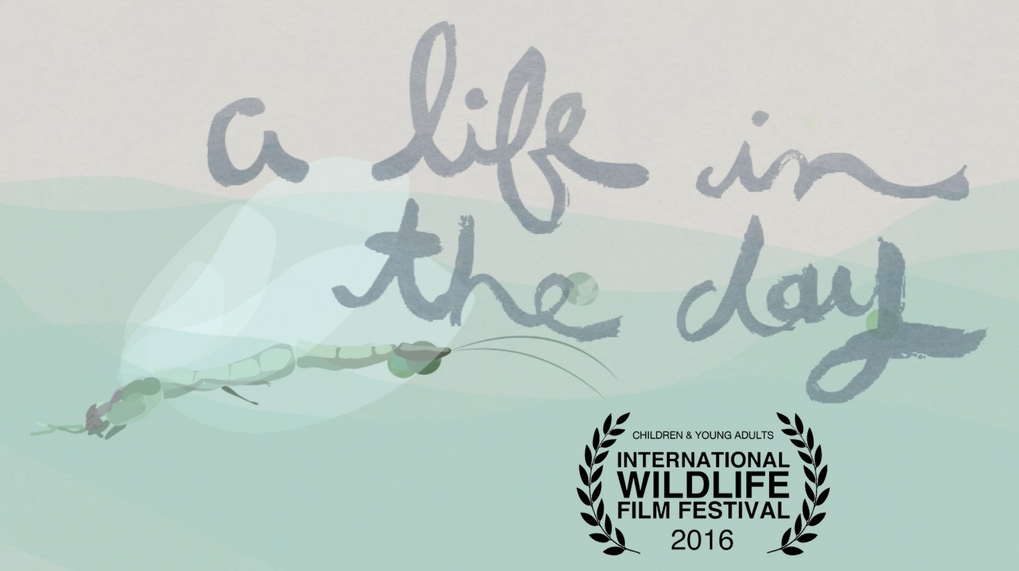 2016 Best Children & Young Adults Film Award from Int'l Wildlife Film Festival  Colin Scott - Director  Audrey Lovegren - Animation  Aaron Peterson - Sound Design and Score