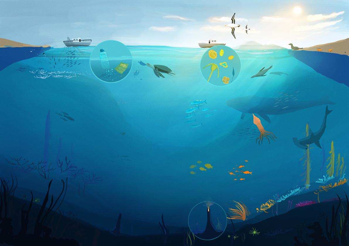 Oceans_04_rgbweb.jpg