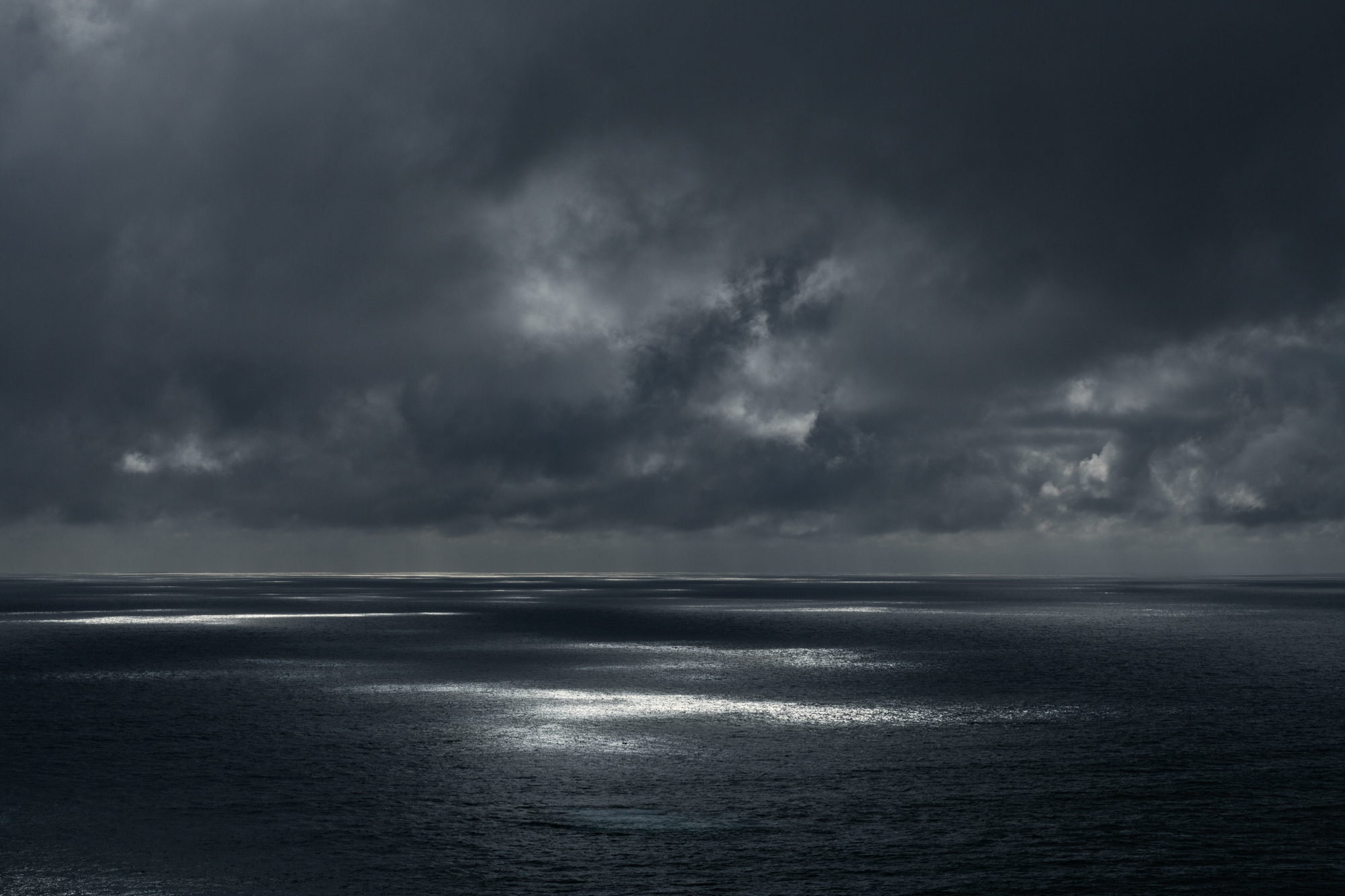 Dappled 2, Muriwai Coast.JPG
