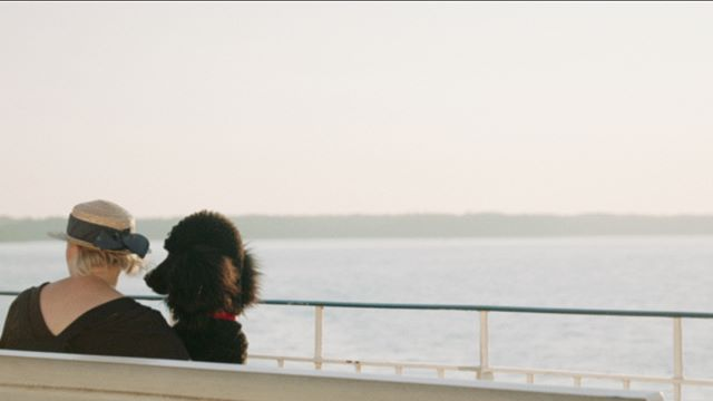 Making some modern footage look old for @british_sea_power  upcoming Krankenhaus festival. Here's a lady taking her poodle on a boat trip.  #krankenhaus #krankenhausfestival #filmconvert #super8 #notsuper8   