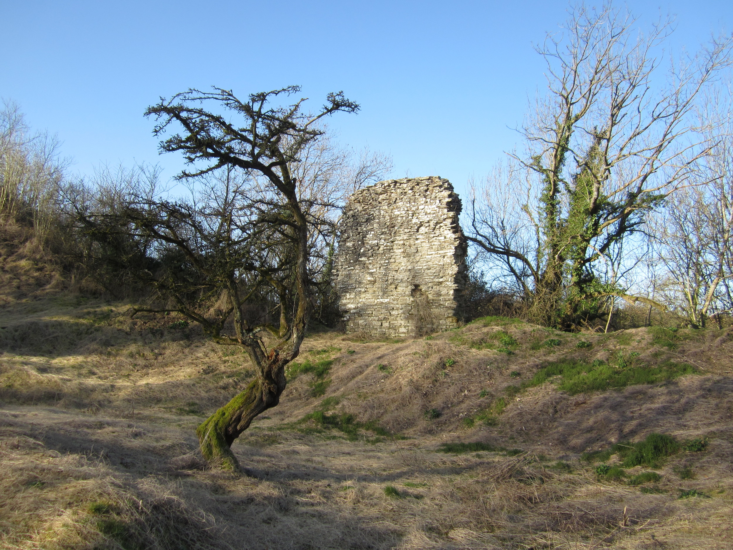 Huntington Castle was deemed to be beyond repair in 1460.  Two fragments now remain.