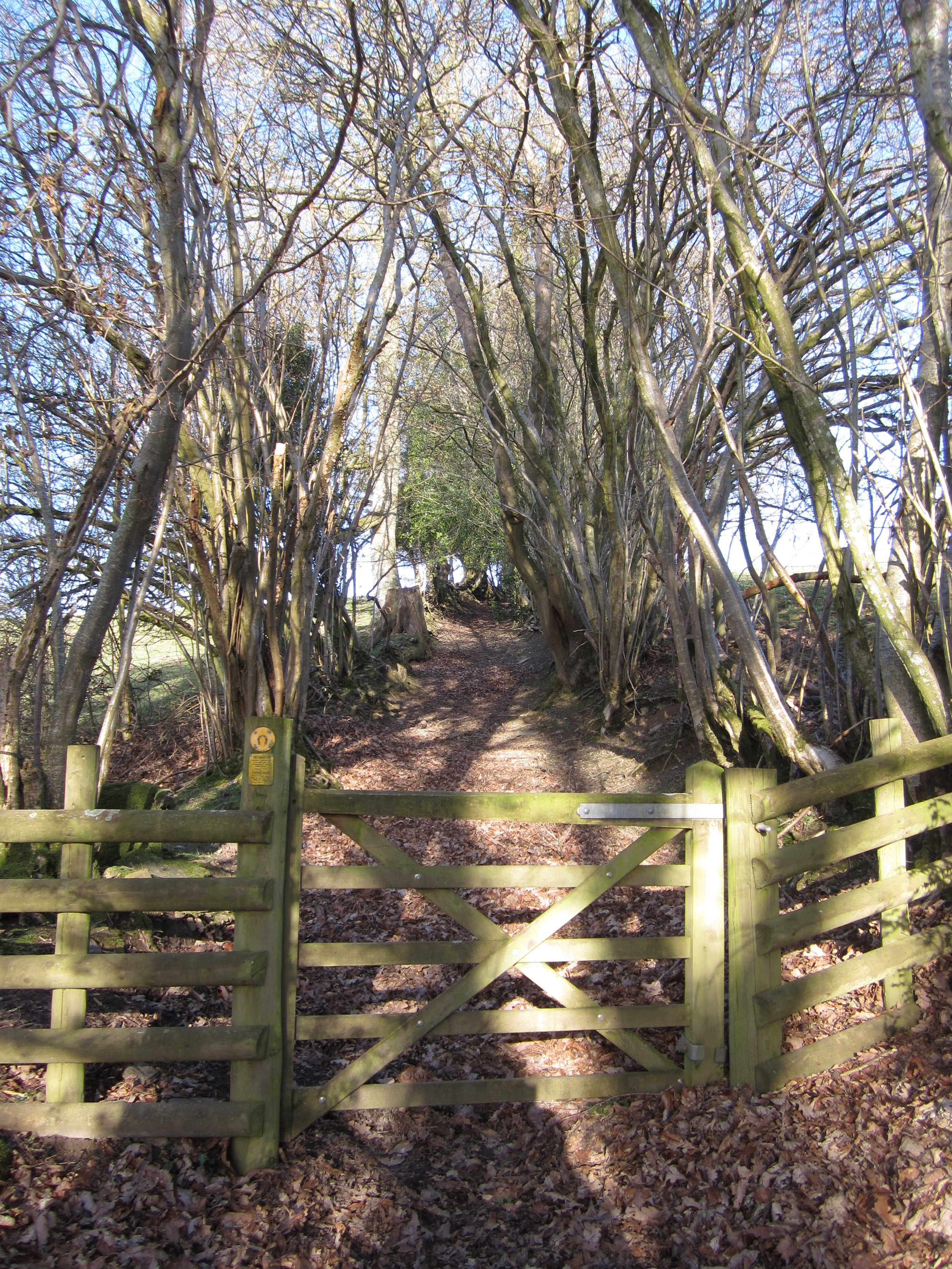 An ancient drovers path from Huntington to neighbouring Gladestry in Wales