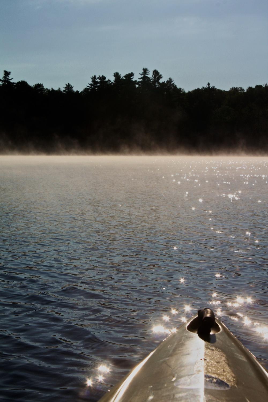 12Gale Straub Maine.jpg
