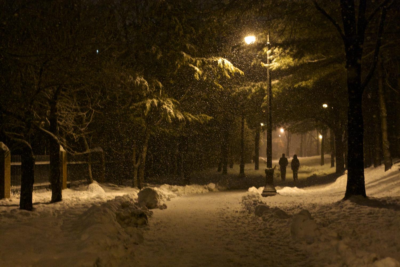 9Gale Straub Night.jpg
