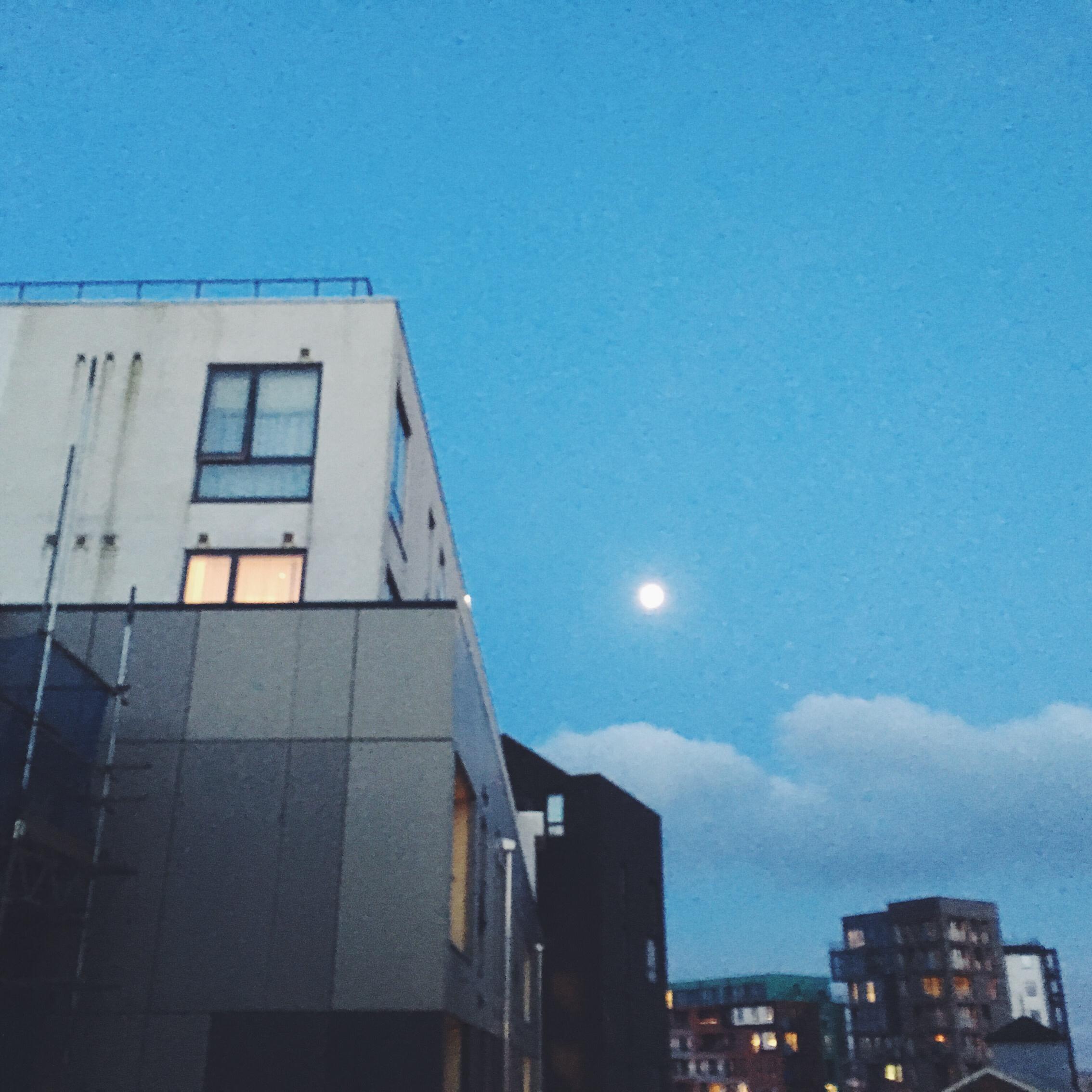 A Moon Shaped Moon
