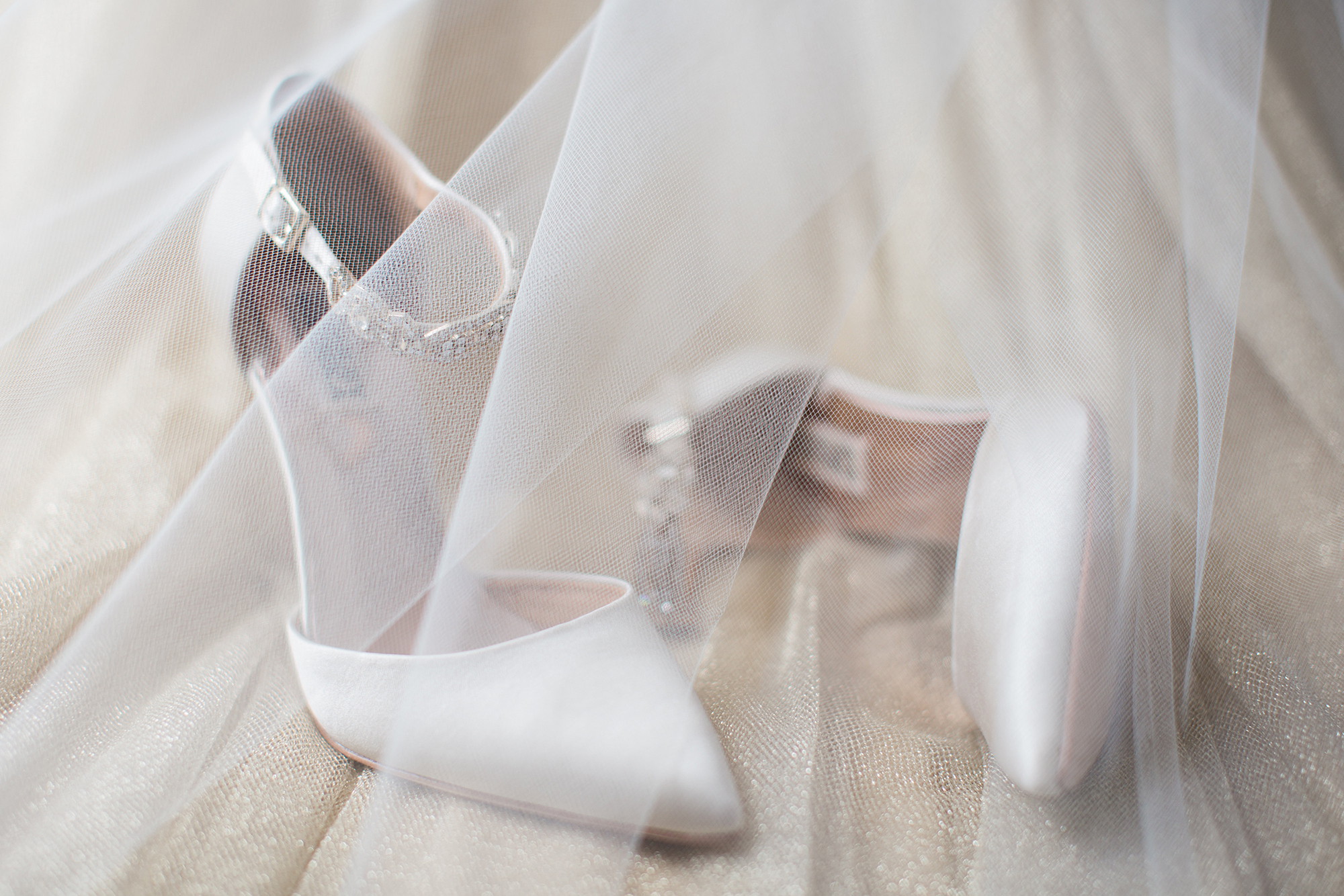 Crystal Ballroom Wedding Erin Stubblefield Weddings and Portraiture St. Louis 3.jpeg