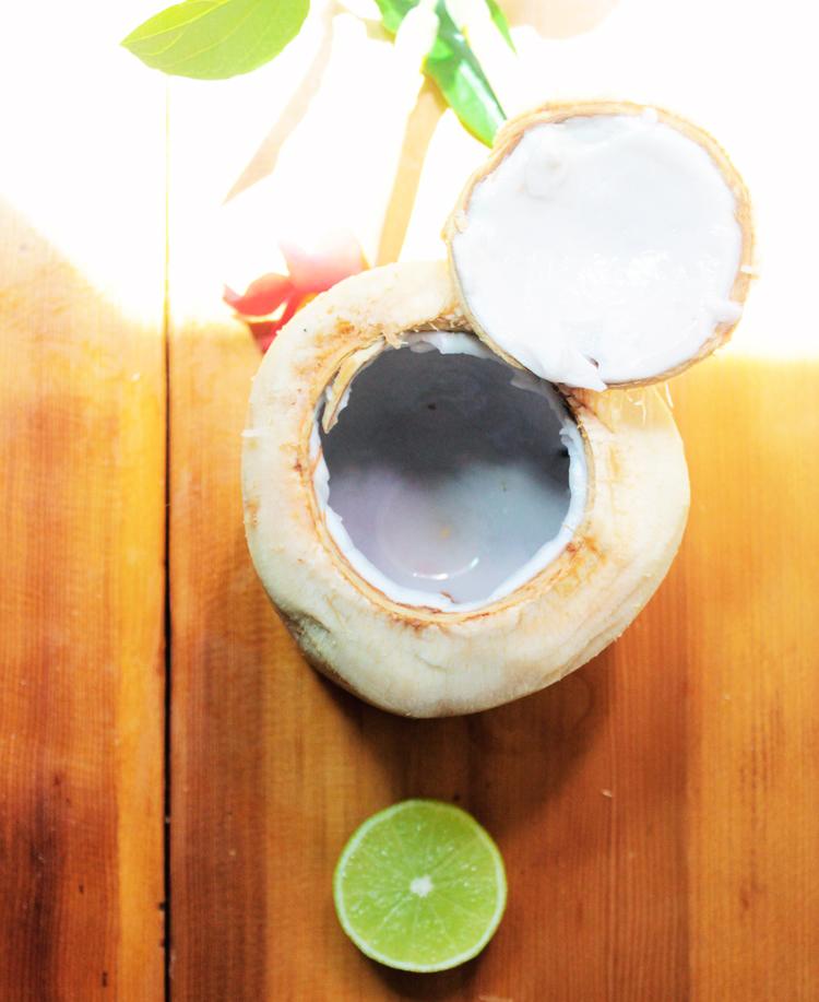 coconuteopen2.jpg