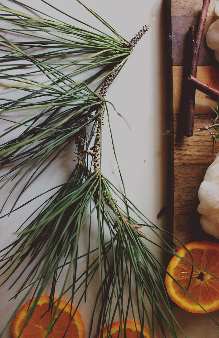 Simmer Pot Room Freshner For Christmas   Most Popular In December! sweetdisasters.com